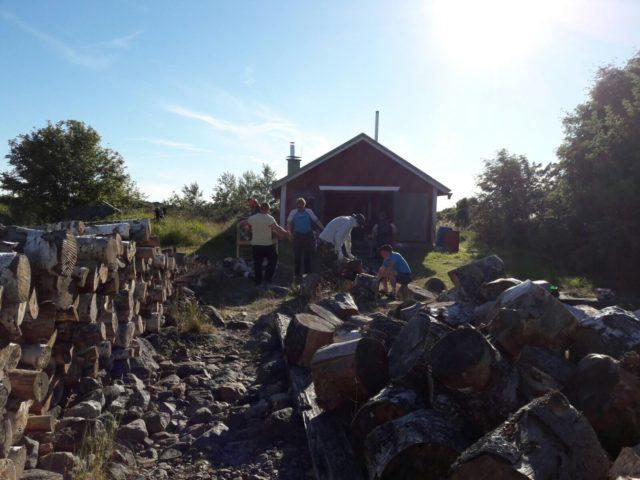 Sauna- ja leirinuotiopuita