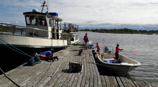 Kalojen metsästys haaveilla