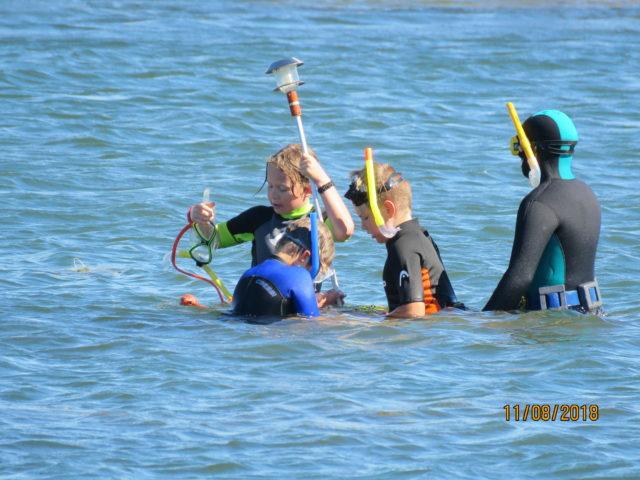 Snorklaamista